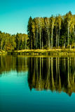 Τοπίο φθινοπώρου σε μια λίμνη στην κεντρική Ρωσία Στοκ Εικόνα