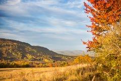 Τοπίο φθινοπώρου στα βουνά lago-Naki Στοκ Εικόνα