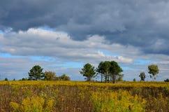 Τοπίο φθινοπώρου στη Σιβηρία στοκ φωτογραφίες με δικαίωμα ελεύθερης χρήσης