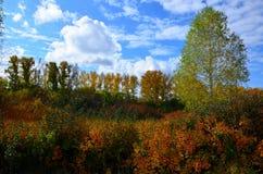 Τοπίο φθινοπώρου στη Σιβηρία στοκ φωτογραφίες