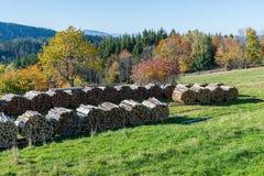 Τοπίο φθινοπώρου στο βουνό μικρό Arber, Βαυαρία, Γερμανία Στοκ Εικόνες