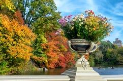 Τοπίο φθινοπώρου στο Central Park πόλη Νέα Υόρκη ΗΠΑ στοκ φωτογραφίες με δικαίωμα ελεύθερης χρήσης