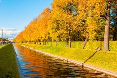 Τοπίο φθινοπώρου της Αγία Πετρούπολης - του καναλιού του Κύκνου και πάρκο φθινοπώρου με τα χρυσά δέντρα φθινοπώρου στον ηλιόλουστ Στοκ φωτογραφίες με δικαίωμα ελεύθερης χρήσης