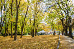 Τοπίο φθινοπώρου της ιστορικής πόλης σε Arrowtown, Νέα Ζηλανδία Στοκ Φωτογραφία