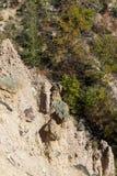 Τοπίο φθινοπώρου της πόλης διαβόλων ` s σχηματισμού βράχου στο βουνό Radan, Σερβία Στοκ Φωτογραφία