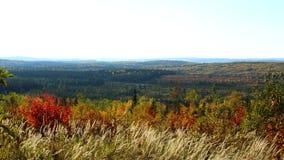 Τοπίο φθινοπώρου του Κεμπέκ στοκ εικόνες με δικαίωμα ελεύθερης χρήσης