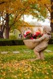 Τοπίο φθινοπώρου του Πεκίνου ` s Στοκ φωτογραφία με δικαίωμα ελεύθερης χρήσης