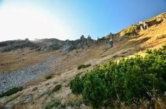 Τοπίο φθινοπώρου των βουνών Στοκ εικόνα με δικαίωμα ελεύθερης χρήσης