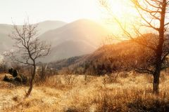 Τοπίο φθινοπώρου των βουνών Apennine, Ιταλία Στοκ Φωτογραφία