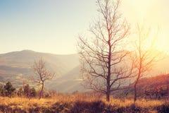 Τοπίο φθινοπώρου των βουνών Apennine, Ιταλία Στοκ φωτογραφία με δικαίωμα ελεύθερης χρήσης