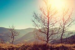 Τοπίο φθινοπώρου των βουνών Apennine, Ιταλία Στοκ Εικόνα