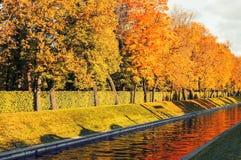 Τοπίο φθινοπώρου Χρυσά δέντρα φθινοπώρου κατά μήκος του καναλιού πόλεων το βράδυ φθινοπώρου Στοκ Εικόνες