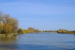 Τοπίο φθινοπώρου Όχθη ποταμού με τα δέντρα φθινοπώρου Λεύκες στο β Στοκ Εικόνα