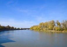Τοπίο φθινοπώρου Όχθη ποταμού με τα δέντρα φθινοπώρου Λεύκες στο β Στοκ Εικόνες