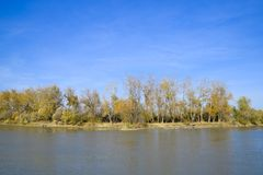 Τοπίο φθινοπώρου Όχθη ποταμού με τα δέντρα φθινοπώρου Λεύκες στο β Στοκ εικόνες με δικαίωμα ελεύθερης χρήσης
