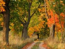τοπίο φθινοπώρου στοκ εικόνα με δικαίωμα ελεύθερης χρήσης