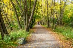 Τοπίο φθινοπώρου Arrowtown Στοκ φωτογραφία με δικαίωμα ελεύθερης χρήσης