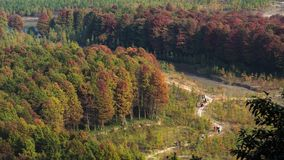 Τοπίο φθινοπώρου Taizhou στοκ φωτογραφία με δικαίωμα ελεύθερης χρήσης
