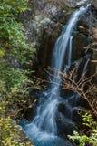 Τοπίο φθινοπώρου Taizhou στοκ φωτογραφίες με δικαίωμα ελεύθερης χρήσης