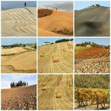 τοπίο φυσικό tuscan χωρών κολάζ Στοκ Φωτογραφίες