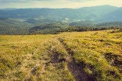 Τοπίο φύσης με τα βουνά και αγροτικός τρόπος στη χλόη Όμορφο τοπίο στα Καρπάθια βουνά Στοκ φωτογραφία με δικαίωμα ελεύθερης χρήσης