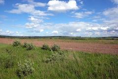 Τοπίο φύσης με τον πράσινους τομέα, το άροτρο και το δάσος Στοκ εικόνα με δικαίωμα ελεύθερης χρήσης