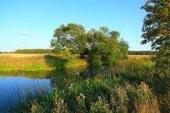 Τοπίο φύσης μια θερινή ημέρα Στοκ φωτογραφίες με δικαίωμα ελεύθερης χρήσης