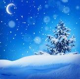 Τοπίο χειμερινής christmass νύχτας στοκ φωτογραφία με δικαίωμα ελεύθερης χρήσης
