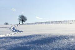 τοπίο χειμερινό Στοκ εικόνα με δικαίωμα ελεύθερης χρήσης