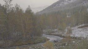 Τοπίο χειμερινών βουνών κατά τη διάρκεια των χιονοπτώσεων Ρυάκι και δέντρα ποταμών βουνών απόθεμα βίντεο