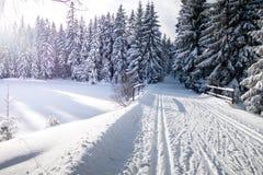 Τοπίο χειμερινών βουνών με τα διαγώνια να κάνει σκι χωρών ίχνη Στοκ Εικόνες