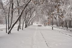 Τοπίο χειμερινών πόλεων Νεφελώδες πρωί Στοκ Φωτογραφία