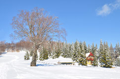 Τοπίο χιονιού, Μακεδονία Στοκ εικόνες με δικαίωμα ελεύθερης χρήσης