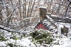 Τοπίο χιονιού των αρχαίων κινεζικών κήπων Στοκ Εικόνες