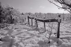 τοπίο χιονώδες στοκ φωτογραφίες