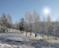 τοπίο χιονώδες Στοκ εικόνα με δικαίωμα ελεύθερης χρήσης