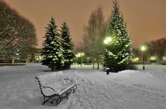 Τοπίο Χριστουγέννων στο πάρκο νύχτας Στοκ εικόνες με δικαίωμα ελεύθερης χρήσης