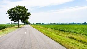 τοπίο χωρών με το δρόμο στην περιοχή της Αλσατίας Στοκ εικόνα με δικαίωμα ελεύθερης χρήσης