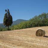 Τοπίο χώρας μεταξύ Rieti Λάτσιο και Terni Ουμβρία Στοκ Φωτογραφία