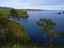 τοπίο ωκεάνειο Στοκ Εικόνες