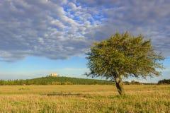 Τοπίο Apulia: Εθνικό πάρκο της Alta Murgia Στο υπόβαθρο Castel del Monte - ITALY& x28 Andria& x29 - Στοκ Εικόνες