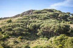 Τοπίο Cima del Monte βουνών κοντά στο Ρίο nell Έλβα, Έλβα, Τοσκάνη, Ιταλία Στοκ φωτογραφία με δικαίωμα ελεύθερης χρήσης