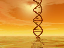τοπίο DNA Στοκ φωτογραφία με δικαίωμα ελεύθερης χρήσης