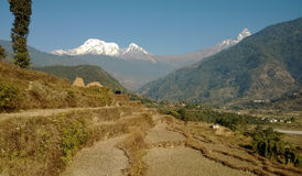 Τοπίο Himalayan Στοκ Εικόνα