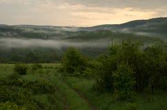 τοπίο misty Στοκ Εικόνες