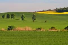 Τοπίο Moravian Τοσκάνη, νότια Μοραβία, Τσεχία Στοκ εικόνες με δικαίωμα ελεύθερης χρήσης