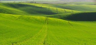 Τοπίο Moravian Τοσκάνη, νότια Μοραβία, Τσεχία Στοκ φωτογραφία με δικαίωμα ελεύθερης χρήσης