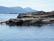 Τοπίο, penguins και βουνά σε Usuahia Αργεντινή στοκ εικόνες με δικαίωμα ελεύθερης χρήσης