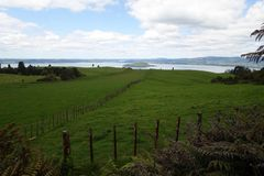 Τοπίο Rotorua στοκ εικόνα