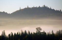 τοπίο s ομίχλης φθινοπώρου στοκ εικόνες με δικαίωμα ελεύθερης χρήσης